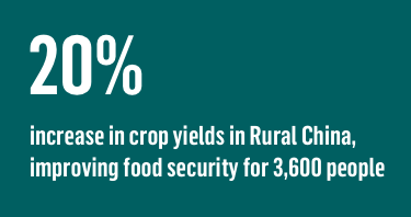 20% increase in crop yields in Rural China, improving food security for 3,600 people