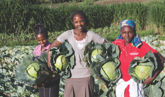<h4>Agriculture and Food Security</h4>