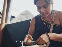 Change the World Through Social Entrepreneurship: US High School Lesson Package Thumbnail