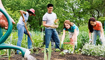 <center>15+ ways for your teen to earn volunteer hours</center>