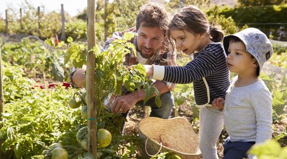 family in farm