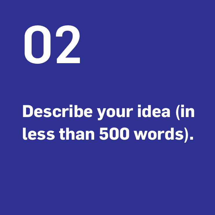 Describe your idea (in less than 500 words).