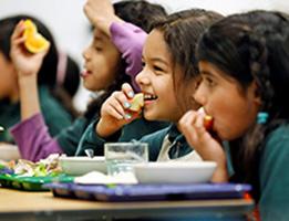 Des aliments sains pour des corps sains,  7e et 8e année  Édition canadienne Thumbnail