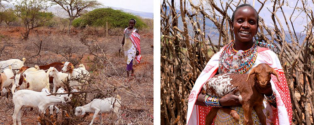 ME to WE artisan Mama Toti showing her goat herd
